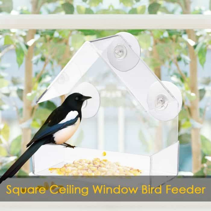 Bird Feeder Transparent Glass Sucker