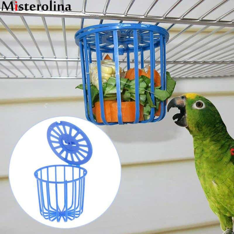 Fruit Vegetable Holder: Every Parrot Owner Should Have This Feeder