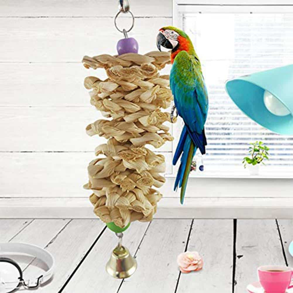 Ideas For Homemade Parrot Toys: It's Incredibly Easy