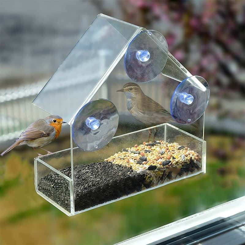 Here Are The 5 Ways To Help You Select A Feeder