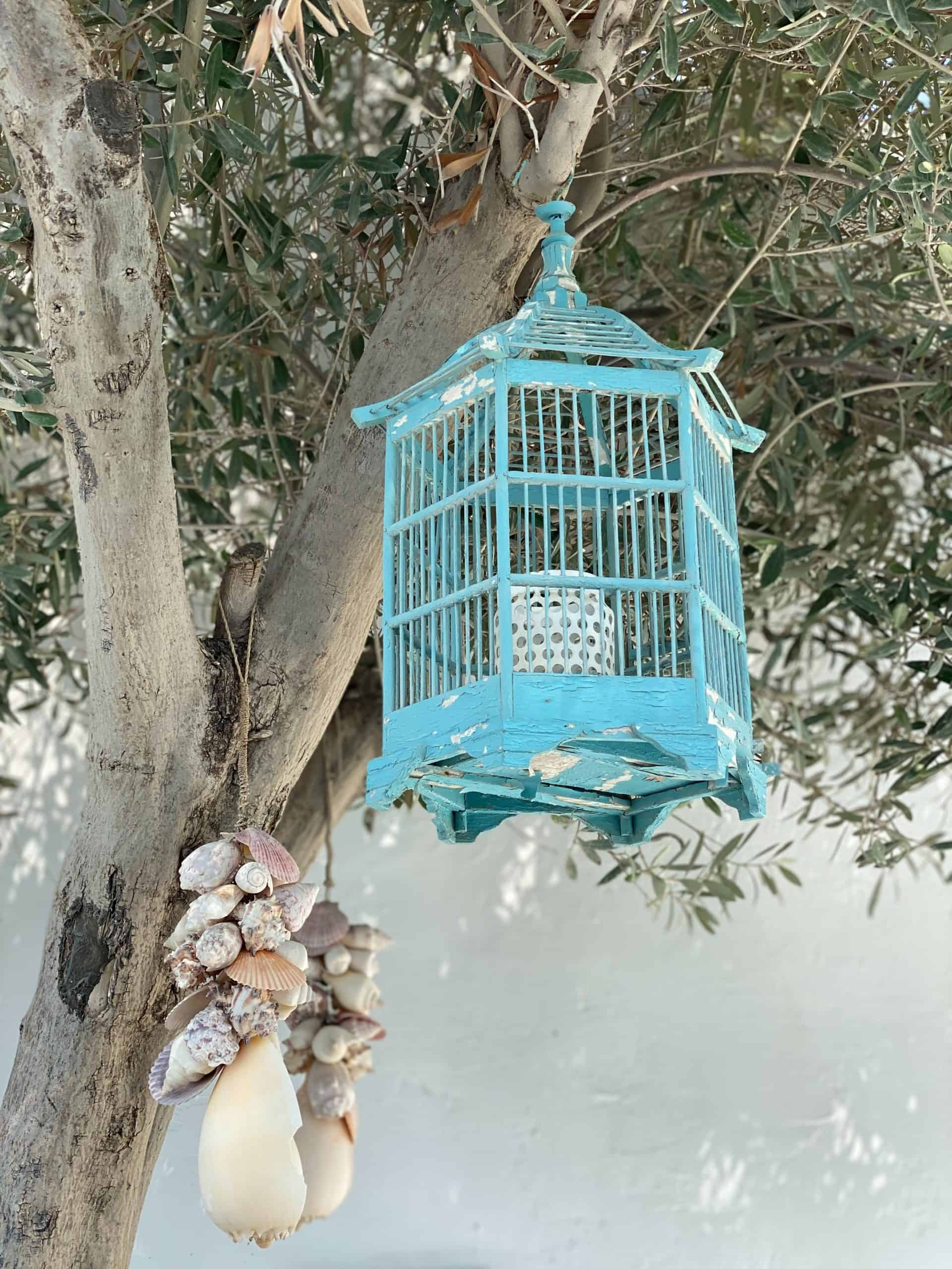 A Birdcage For Your Bird: Designing Your Own